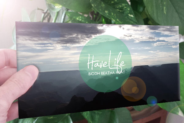 Have Life Trifold 2015